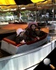 hoffmansboat61708.JPG